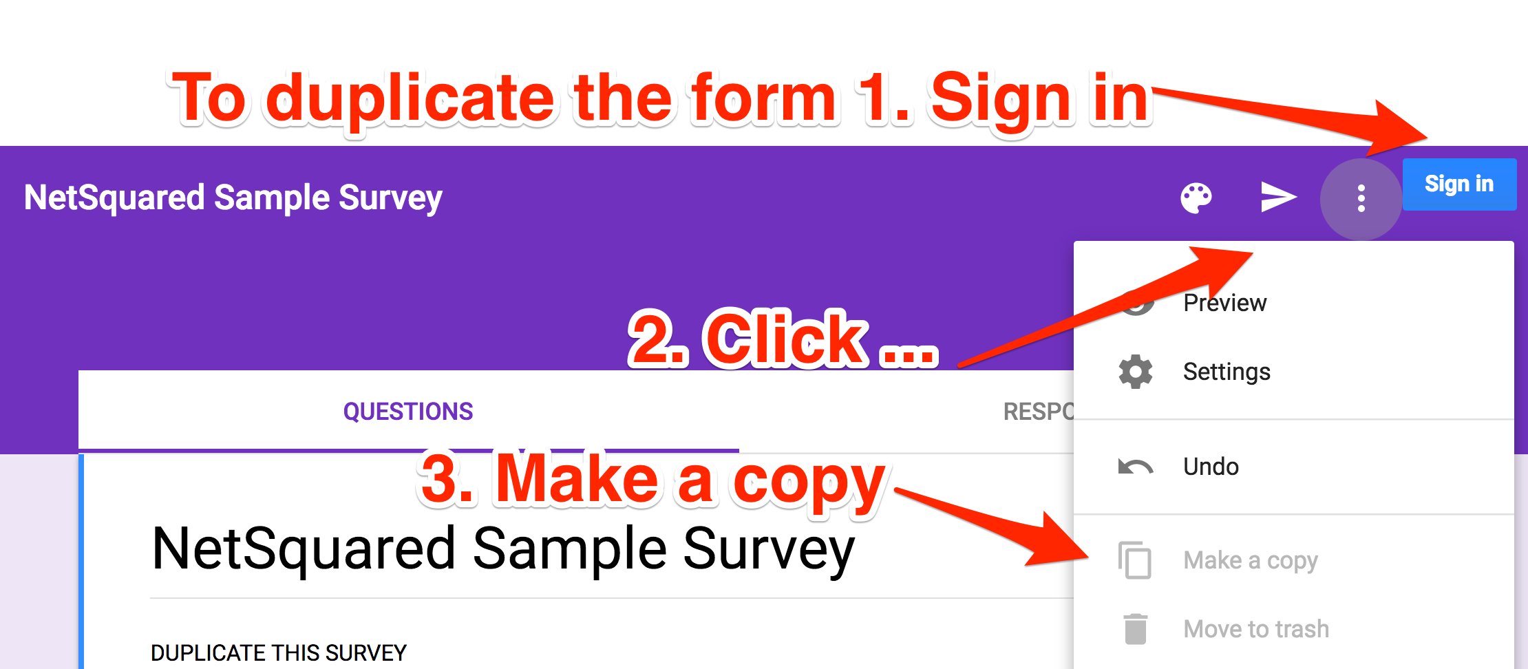 NetSquared_Sample_Survey_-_Google_Forms.png